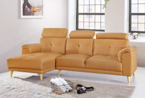 Asher 2 Seater L shape sofa